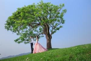 自助婚紗,李雪莉,李家宏,花卉試驗中心,胖哥自助婚紗